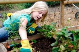 Садовый инвентарь для детей