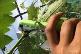 аксессуары - степлер для подвязки виноградных ветвей